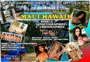 hawaii-flyer-for-teaseum-website1