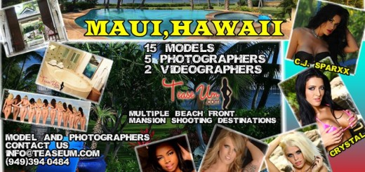 hawaii-flyer-for-teaseum-website1